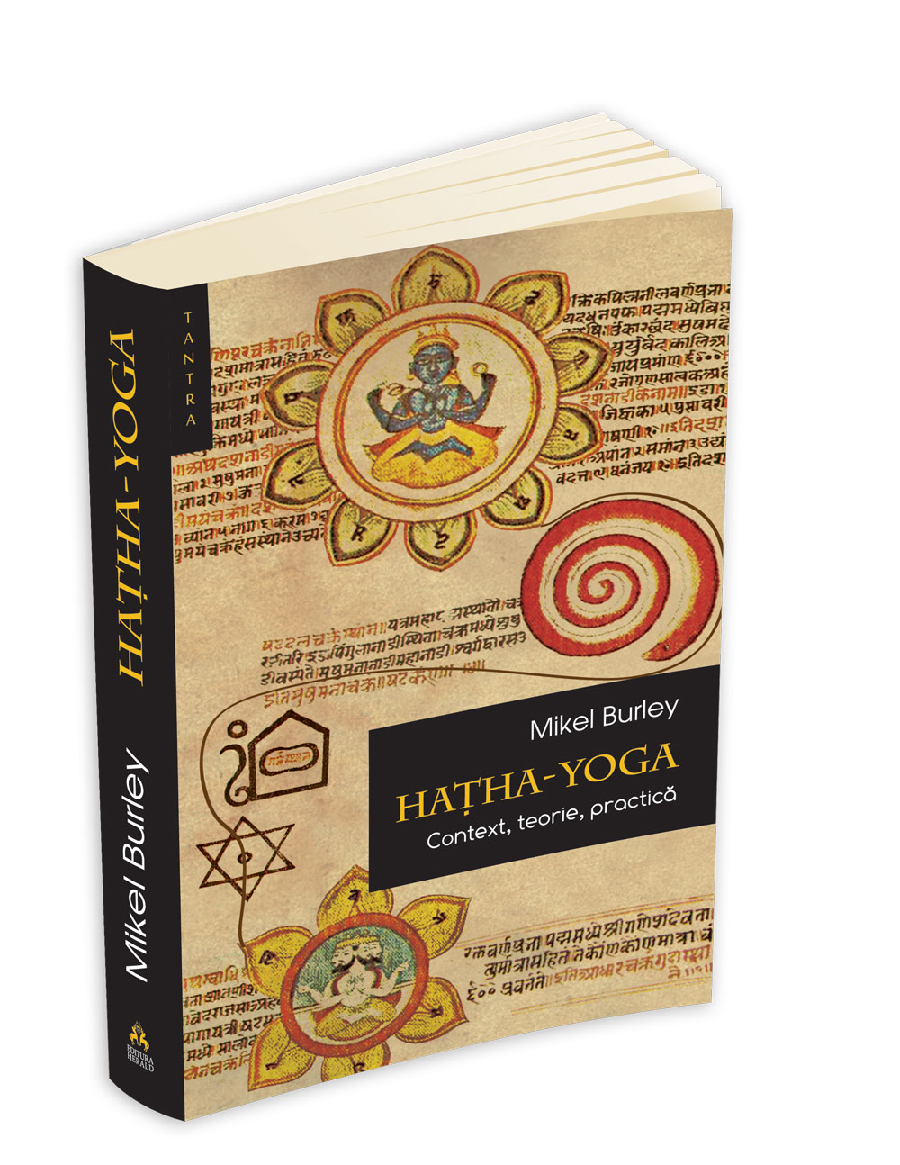 Hatha yoga Context, teorie, practica